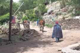 ロッジの前を行き交うブランケット(民族衣装のようなもの)をまとった人々と馬たち。