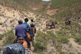 モンゴルの馬度と大きく違うのは、トレッキングで移動する場所が、山や谷を多く含んでいること。こんな山道も馬は力強く歩いていきます。