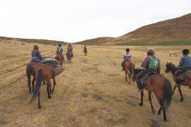 馬旅の醍醐味は、道がなく、車が走れない山々に分け入ることができること。視界も開け、爽快です。