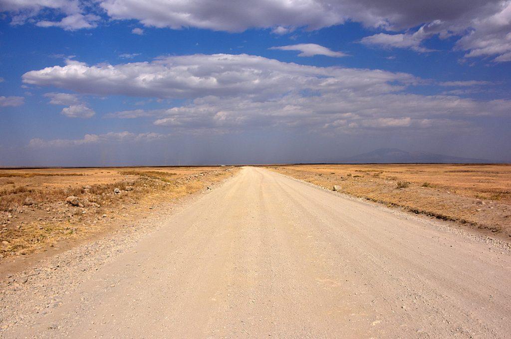 乾燥しきったセレンゲティの大平原