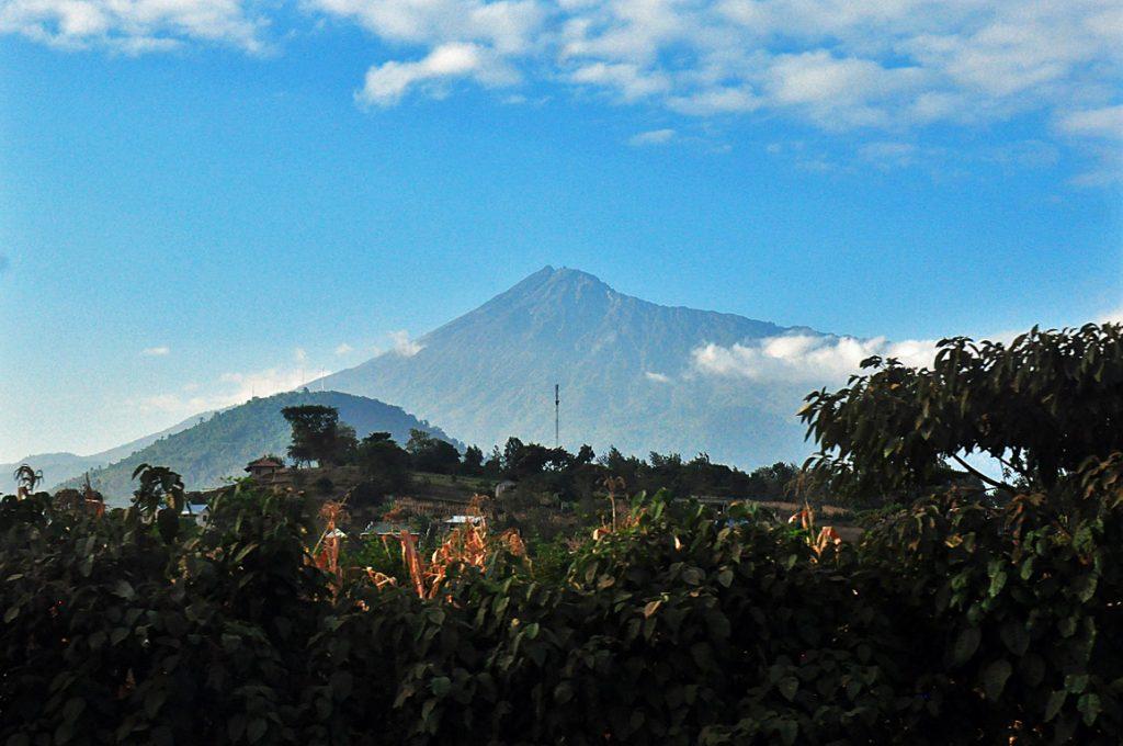 アルーシャから眺めるメルー山