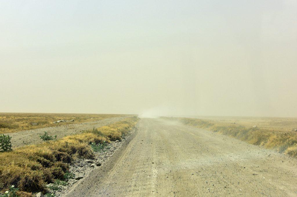 砂嵐のセレンゲティ