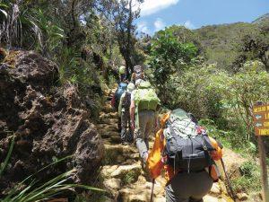 樹林帯は階段状の道をゆっくりと登っていきます。