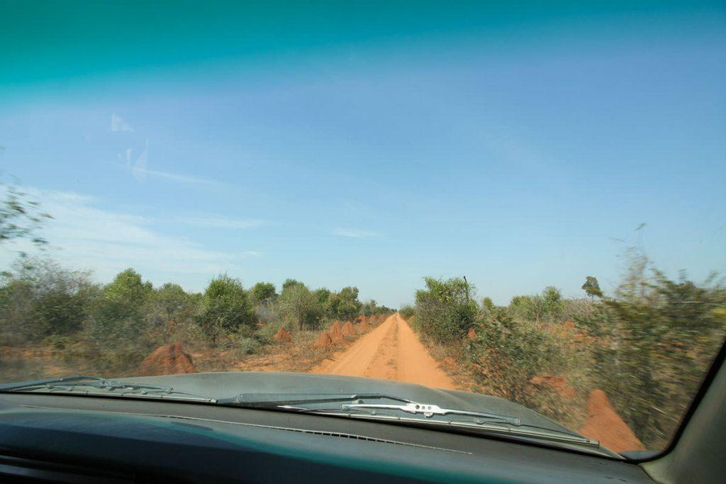 両脇に巨大な蟻塚が立ち並ぶ道