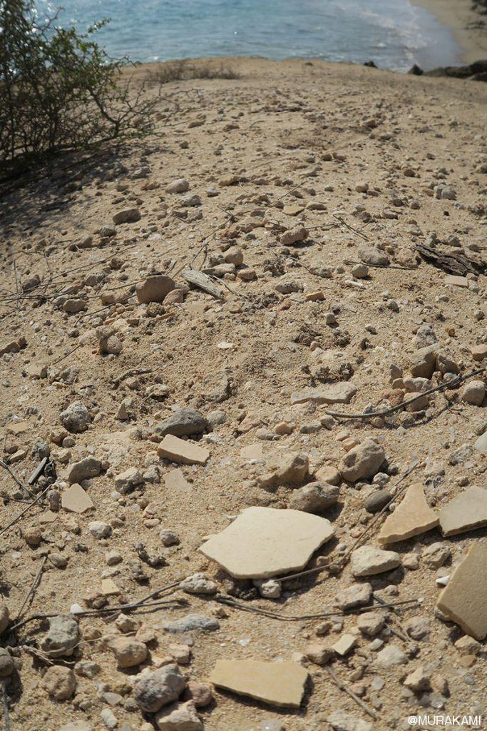 海岸沿いには、絶滅した怪鳥エピオルニスの卵の殻が落ちていました