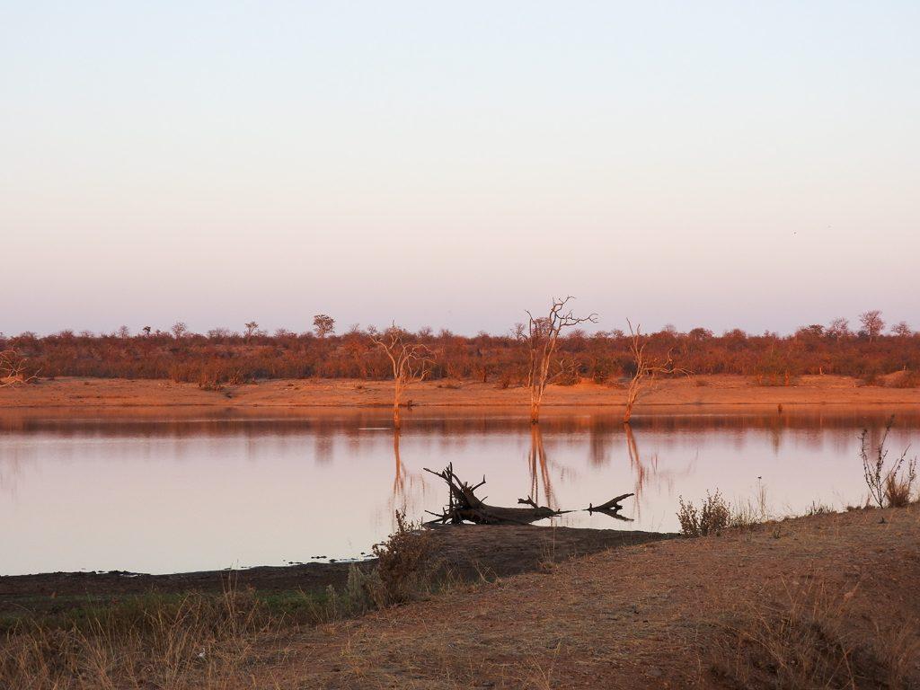 小さな湖ですが、カバも住んでいます。夕食時には声が聞こえました。
