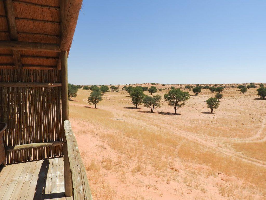 全室カラハリ砂漠ビューです