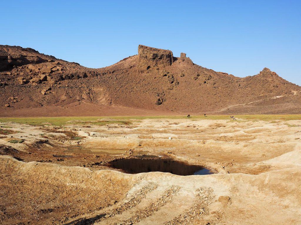 ミネラル分を含んだ土を土手に撒いて天日干しし、塩を採集しています。