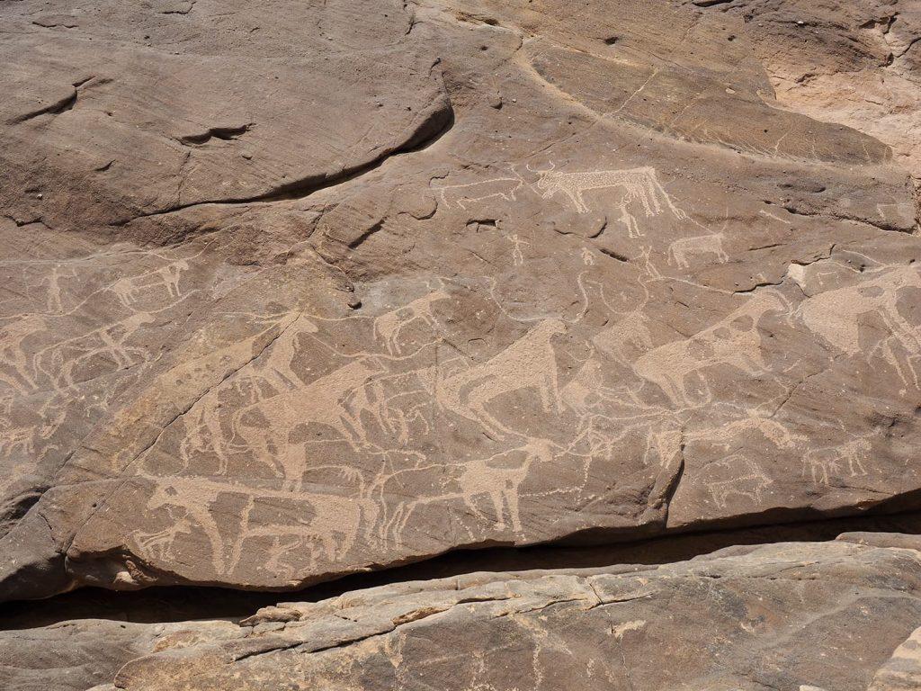 一つの岩面にいくつも描かれている箇所もあります。