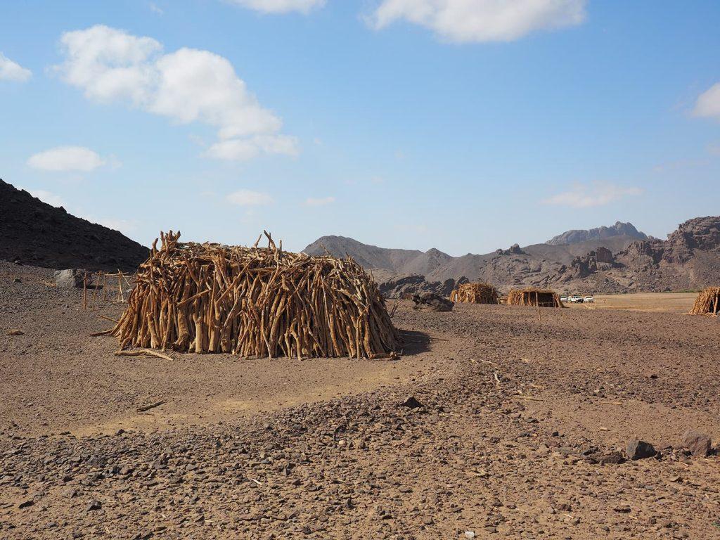 枯れ木を組んで拵えた、ベジャ人の住居