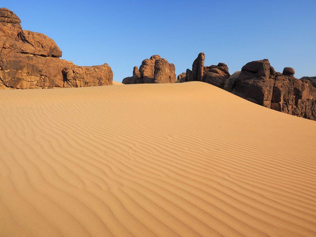 風邪に吹き寄せられ溜まった砂の陰に埋もれて・・・