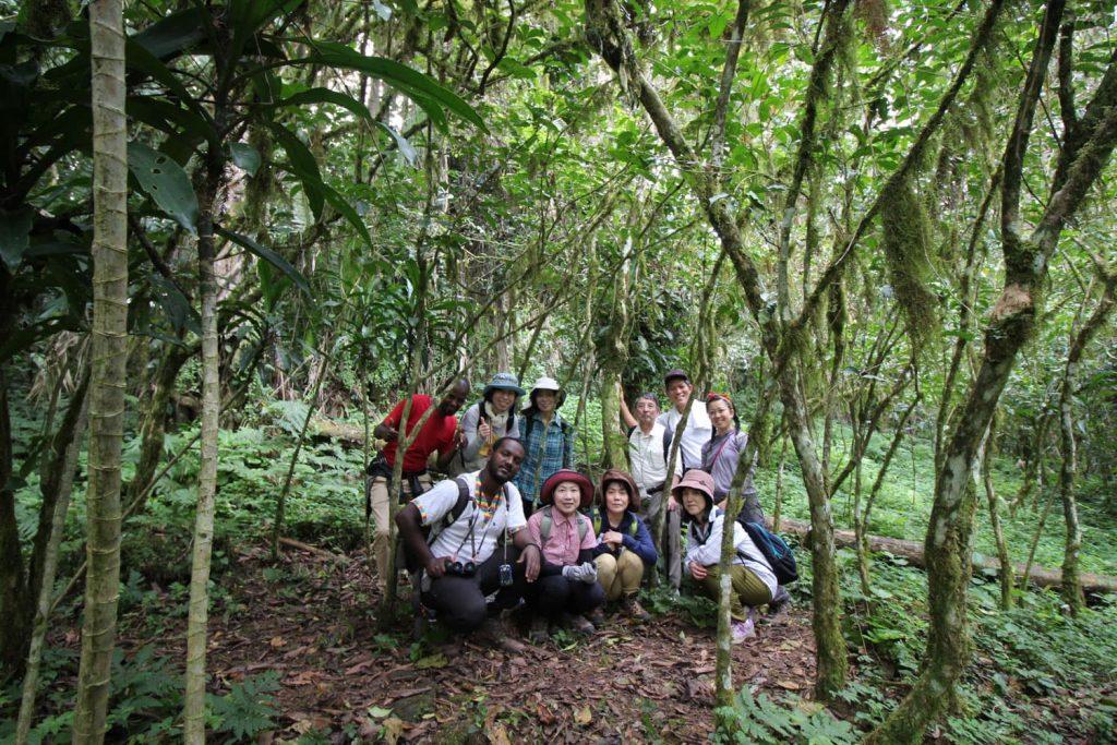 コーヒー原木の森にて