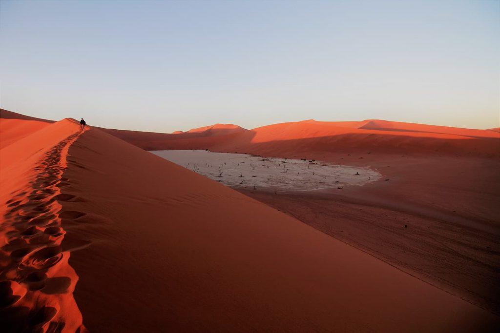 朝日で紅く色づくナミブ砂漠