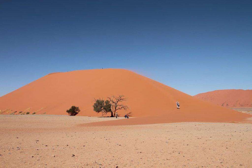 砂丘に登るのは一苦労です。