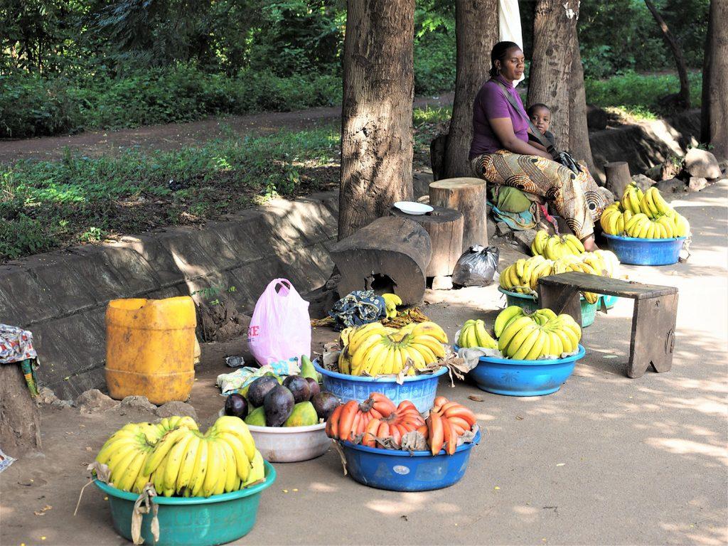 長い移動です。お腹が空いてきました。路上の果物屋さん。手前に見えるのは珍しい『赤いバナナ』です。