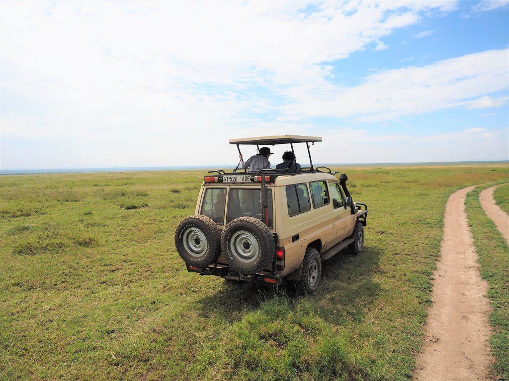 約7時間の移動を経て、やっとセレンゲティに到着!マサイ語で「果てしなく広がる平原」という意味があります。
