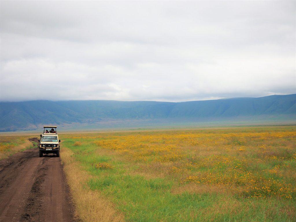 ンゴロンゴロでは、あまりたくさんの動物に会う事は出来なかったのですが、美しい景色の中をドライブするのはそれだけで贅沢なひと時でした。