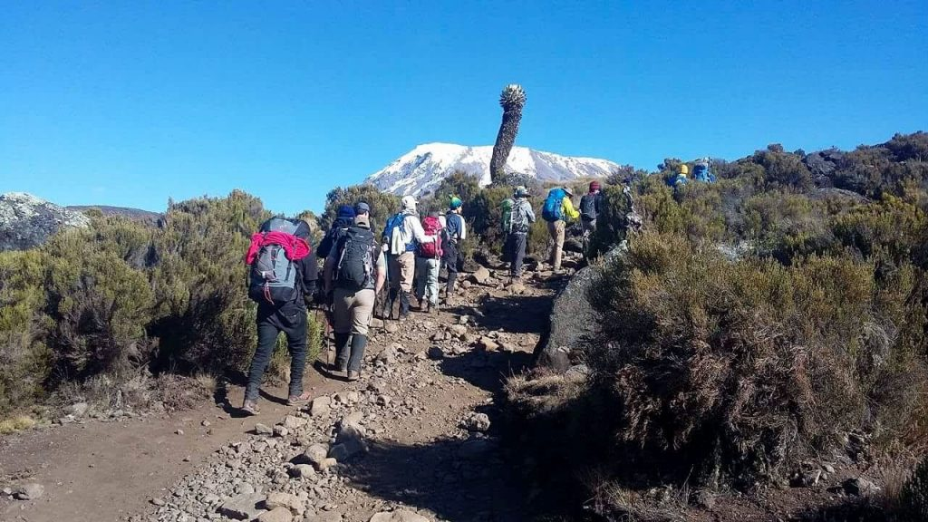 ホロンボハットからの登り。4000m付近で徐々にきつくなってきます