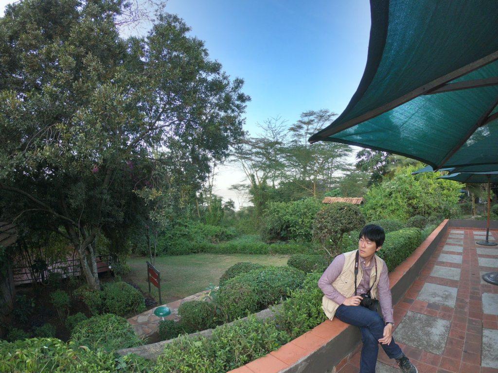 レストランのテラス 深い緑の良い眺め