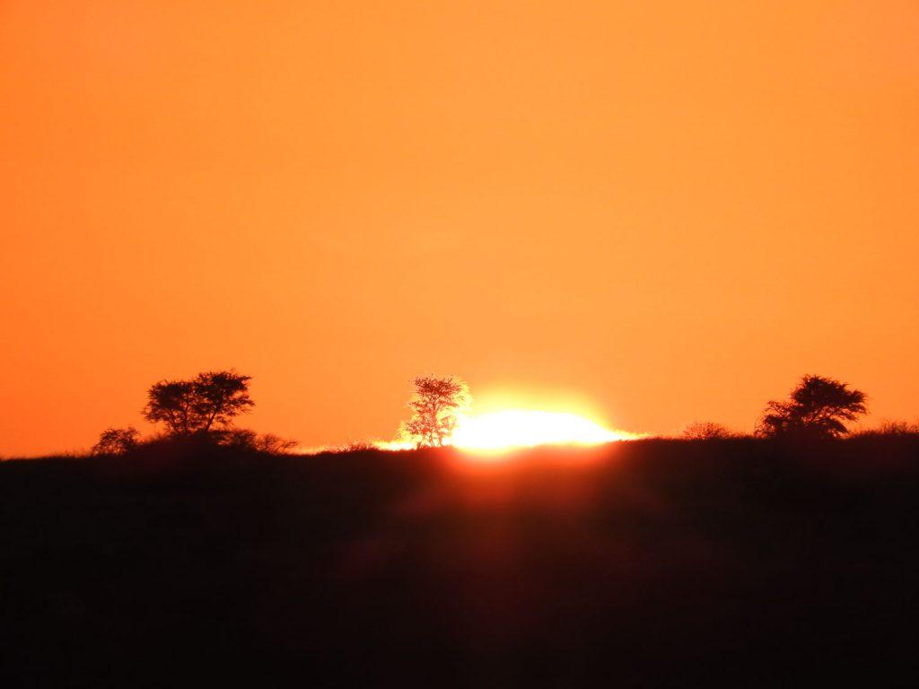 初日の出です。ボツワナではほとんど毎日が晴れなのでわざわざ日の出を見るという感覚がありません。私達にとってはさすがに初日の出を外せません。
