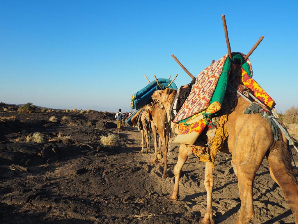 夕食を済ませ、1泊分の荷物を持って、ラクダと共に登っていきます。