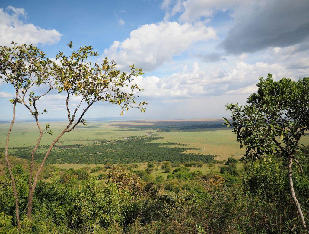 ロッジからの景色はマサイ・マラが一望できます。