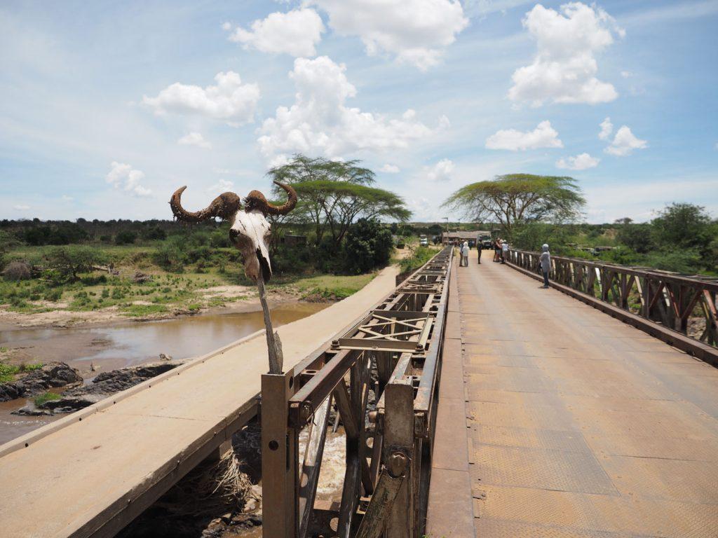 現在はサファリカーも安心して渡れる立派な橋が架けられています。