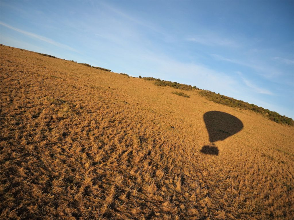 朝焼けに染まる草原を風に乗って進みます。意外にスピードも出ています。
