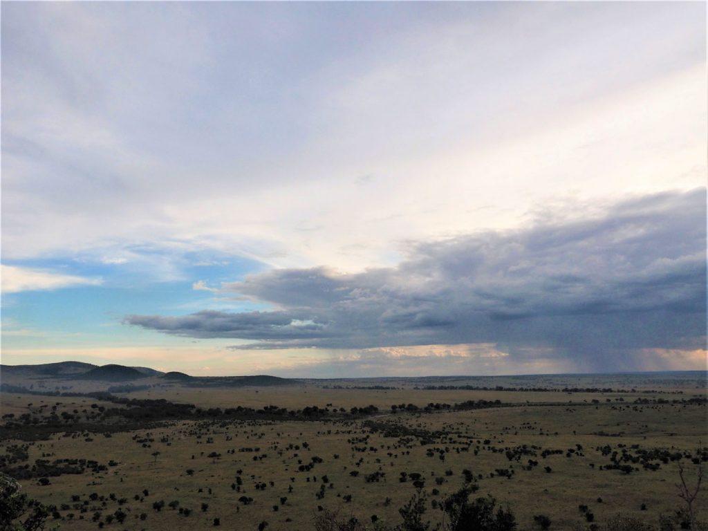 セレンゲティ国立公園の方には雨が降っています。(写真の右の方)