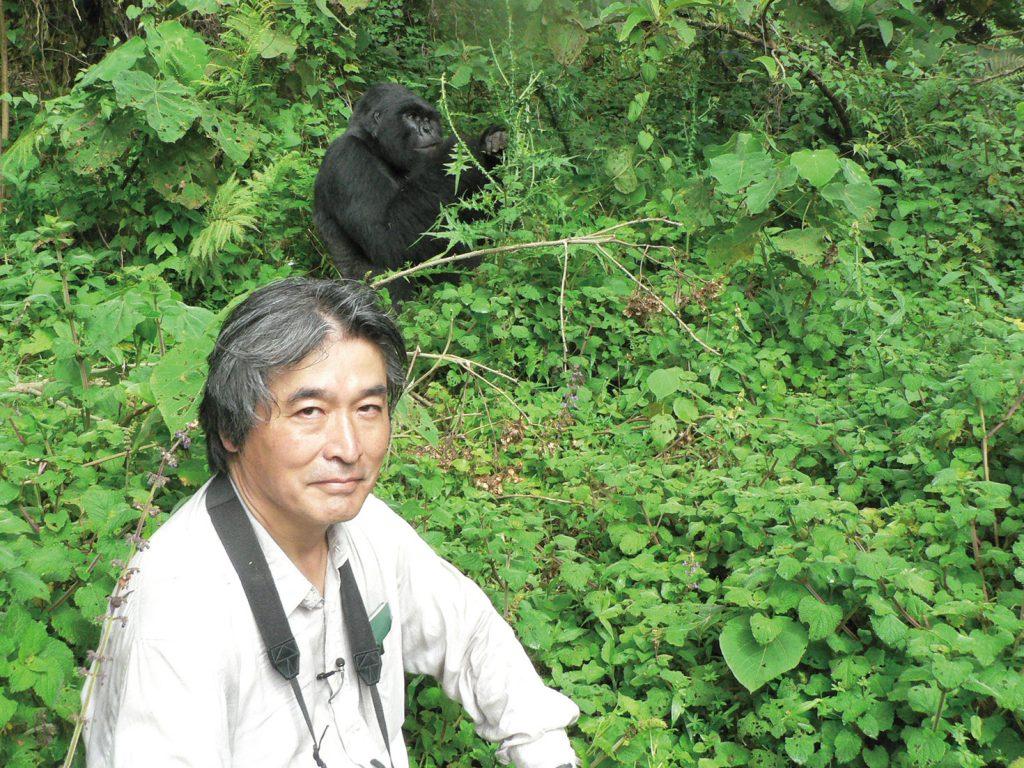 マウンテンゴリラと一緒に(2010年)