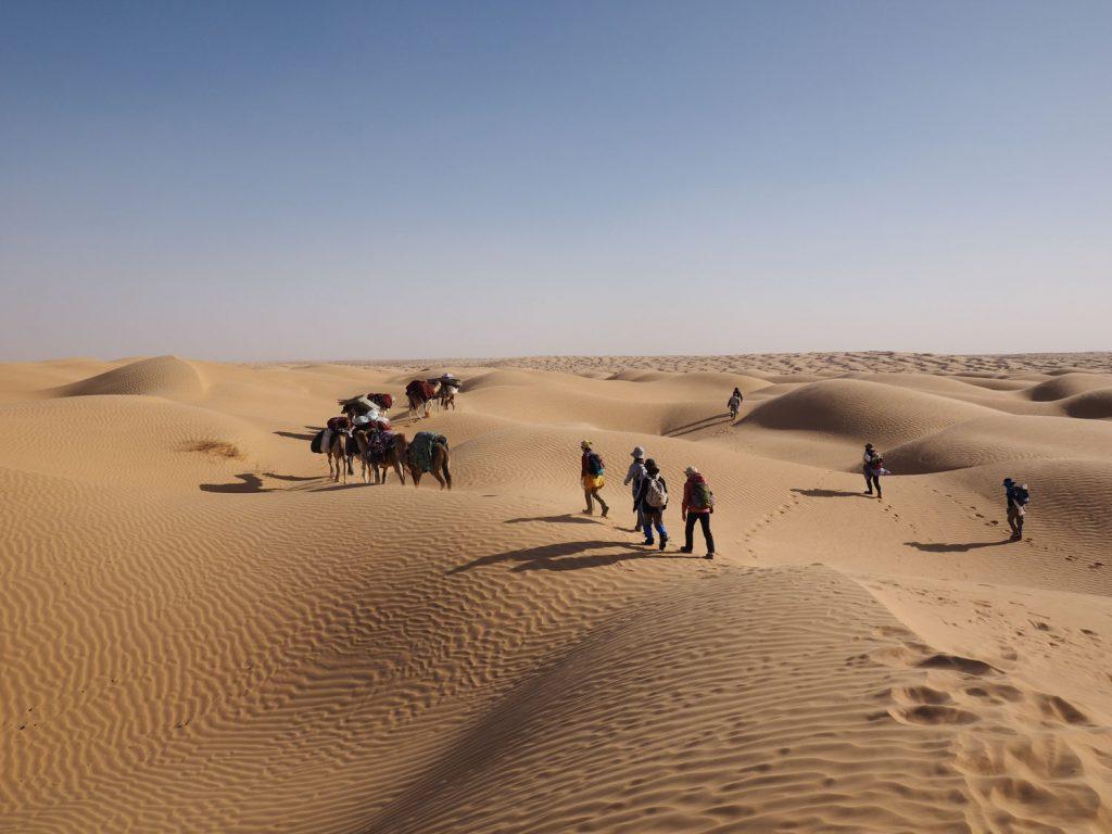砂丘地帯を歩くのはしんどいですが、テンションは上がります