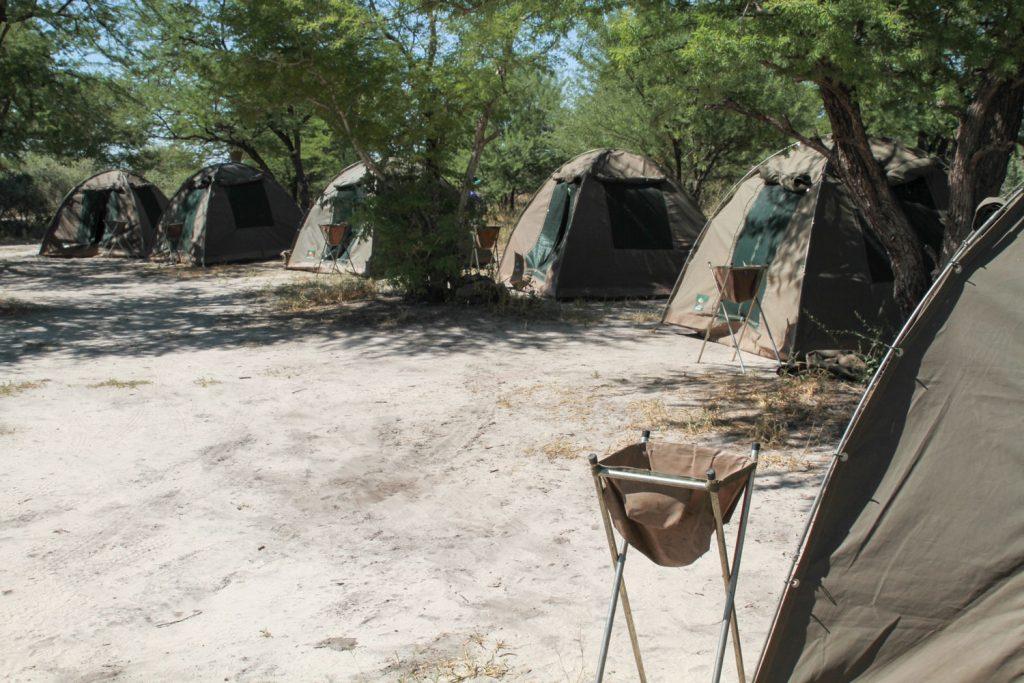 サファリフィールドに溶け込むキャンプサイト2