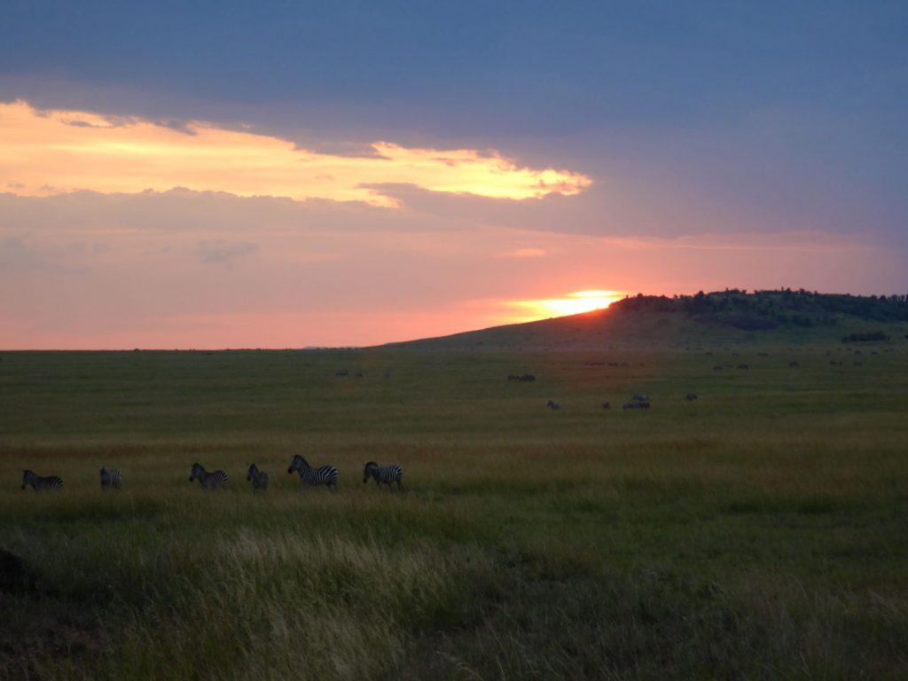 ロッジに着く途中の夕焼けと動物の景色が感動的でした。
