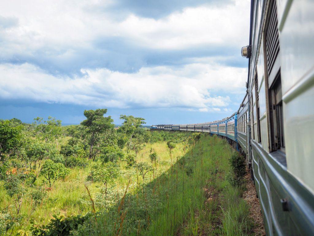 TAZARA鉄道が動き出しました。数十分も走り出せば、あたりはすっかり緑の中です。