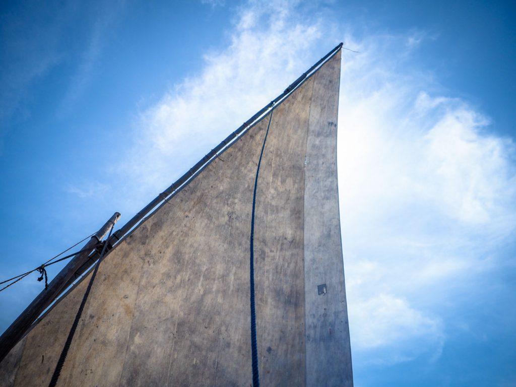 大きく空に張り出しました。北から吹き付ける「カシカジの風」そのものが我々の命綱です。
