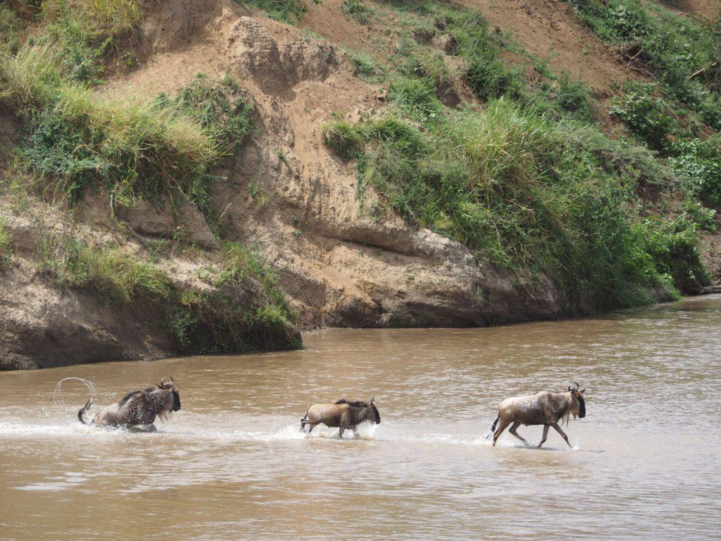 小さな子どもも、背丈よりも深い河の中を、親に続けと渡ってきます。