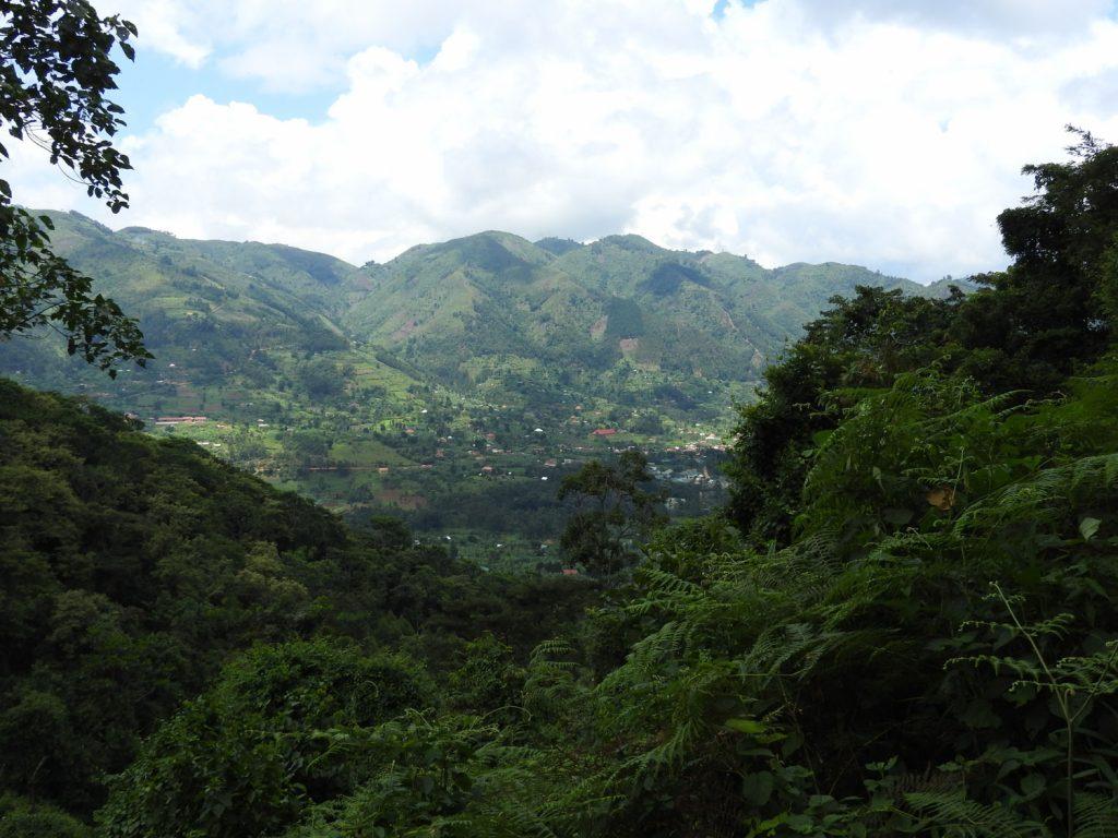 約400mの高度差を登った頂上からの眺めです。