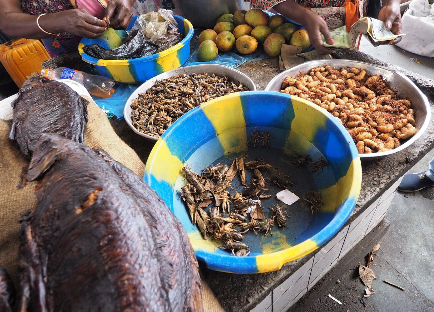 1日1回、正確には0.8回、大きな村に上陸して、バザールを見学、食料を仕入れる。野菜類が少ないので、野菜嫌いな方には都合がいい。果物は、野生のバナナやパイナップル他、初めて見た(食べた)モノも多かった。