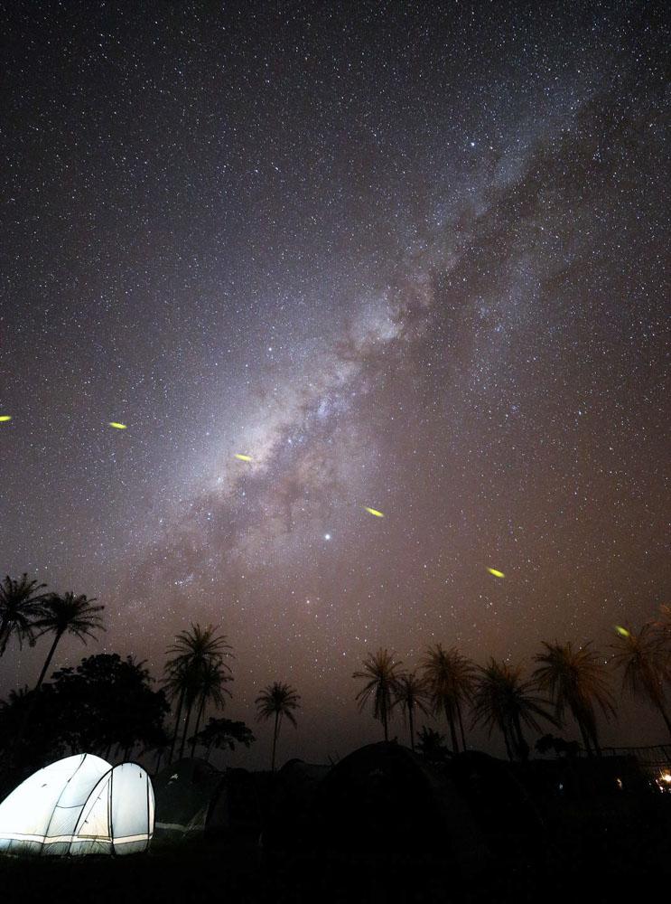 人工の明りが「ほぼ無い」ので、星空が美しかった。黄色の光跡はホタルだ。