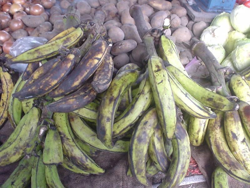 材料のプランテンバナナ