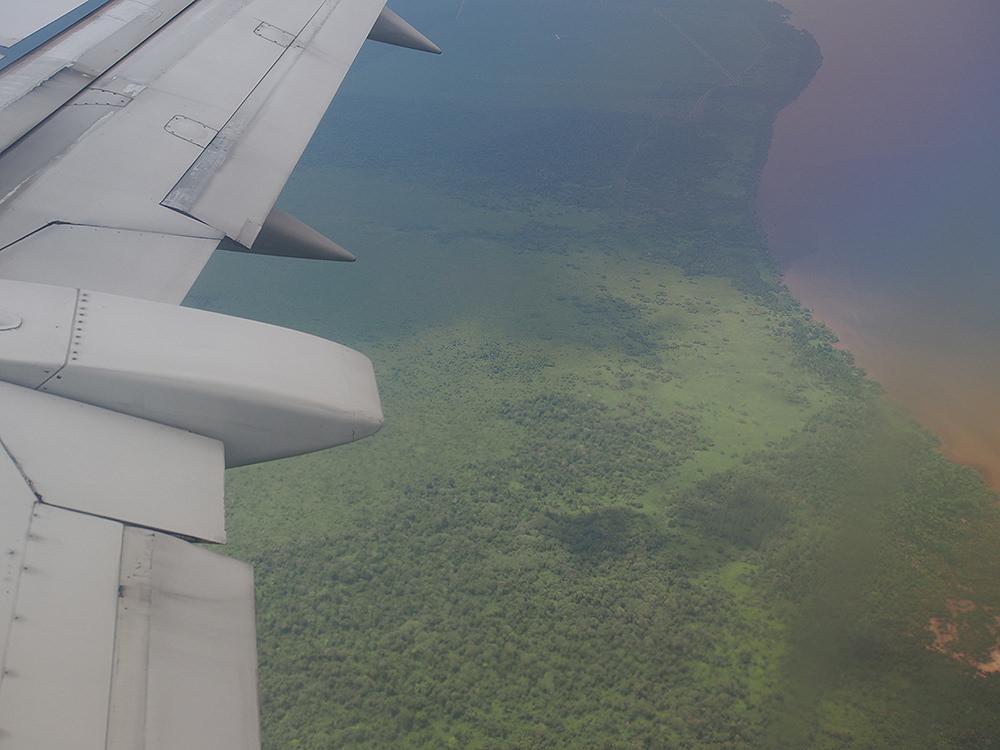飛行機の窓から見下ろすカリマンタン島南部の森