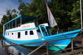 こんなリバーボートで川を遡上。デッキがあり、そこから川沿いの樹上を観察したり、デッキ上のテーブルで食事もできます(本来は宿泊も)。