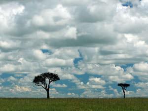 雲とバラマイテス 何処までも何処までも、雲が水平まで続くようです。