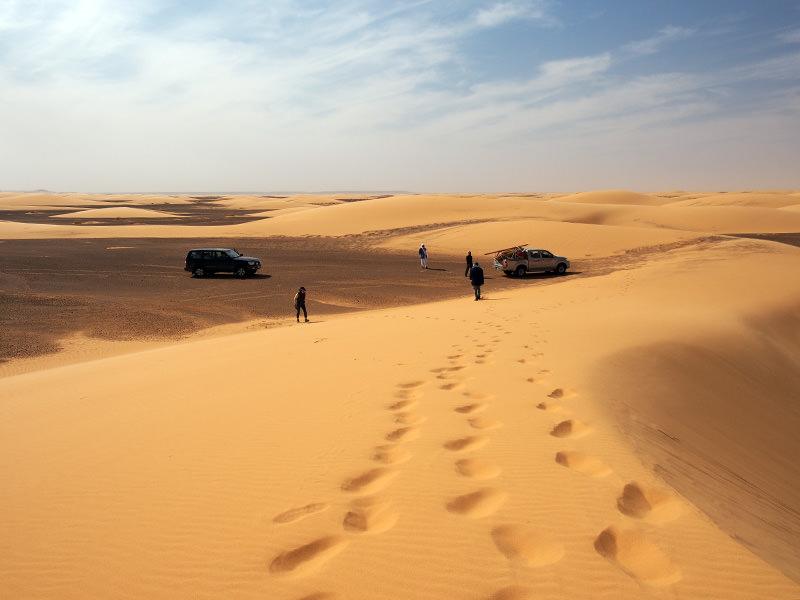 多くはありませんが、砂丘地帯も通過します。砂丘も風で移動しているため、ドライバーさんもルートを探りつつ車を進めていきます。砂が軟らかい箇所では度々スタック。
