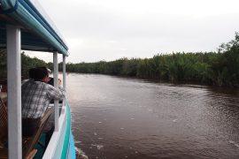 船のデッキから川沿いを観察。