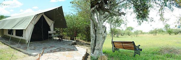 左 : オルケリキャンプの常設テント。ちょっと小さいですが居住性GOOD. 右 : オルケリキャンプの庭。ビールでも飲みながらのんびりですね。