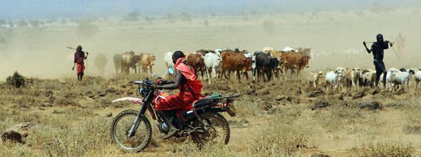 キリマンジャロ山を望むマサイの村にて ついに出ましたマサイライダー牛追い。何かが大きく変わり始めている予兆でしょうか。