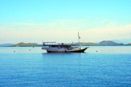 コモドの島々への海上移動に利用する船。キャビン&キッチン付きで、こちらも宿泊可能です。