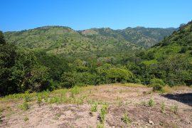 バリ島の東、ウォーレス線を越えると、気候は熱帯からサバンナ気候に変わり、コモド島もサバンナ気候帯に含まれます。