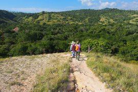 リンチャ島では、多少アップダウンのあるコースを歩いてドラゴン探し。